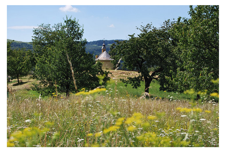zahrada-projekce brumov sv. anna