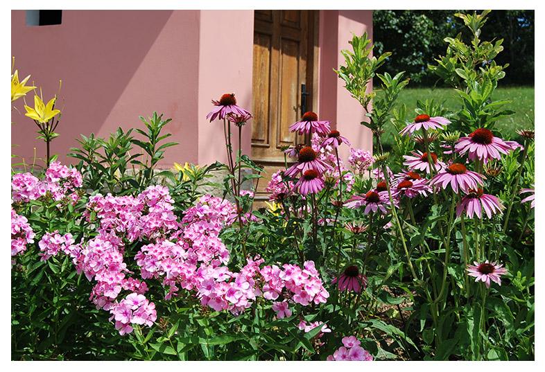 zahrada-projekce vysoké pole stezka zdraví