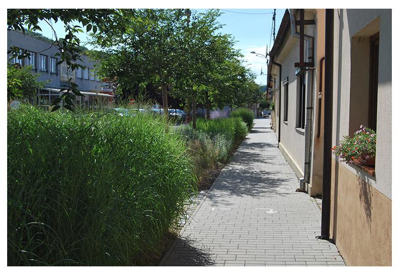 zahrada-projekce bojkovice sídelní zeleň
