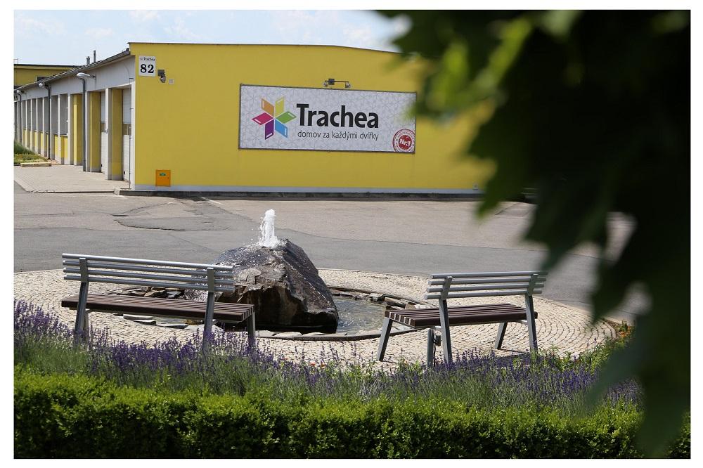 zahrada-projekce trachea